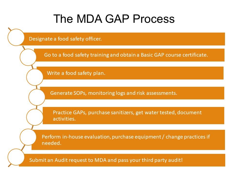 GAP Process
